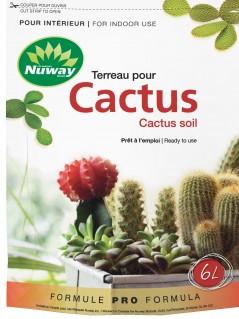 Cactus3D