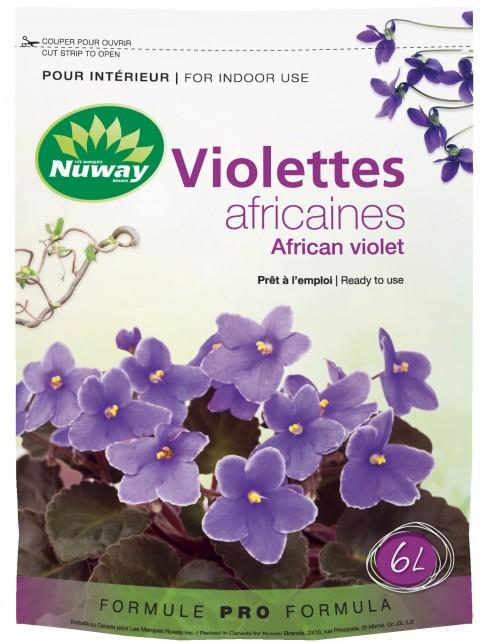 Violettes3D