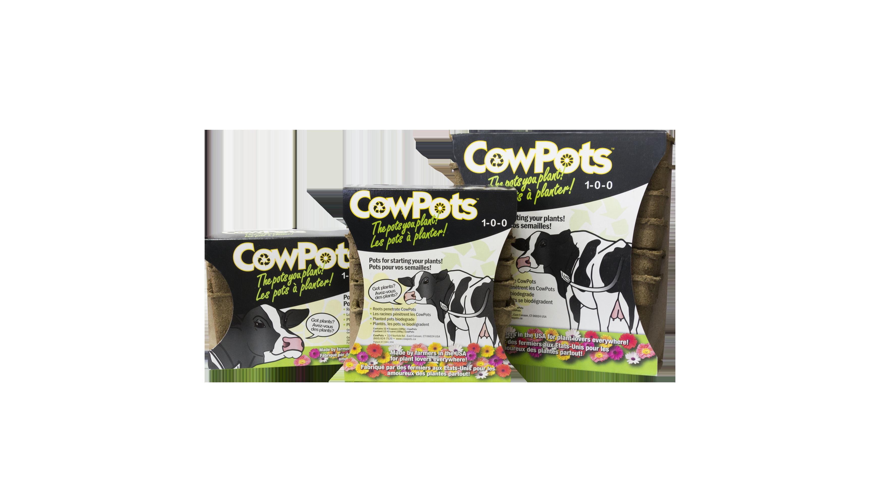 Cowpots the 3 sizes-2